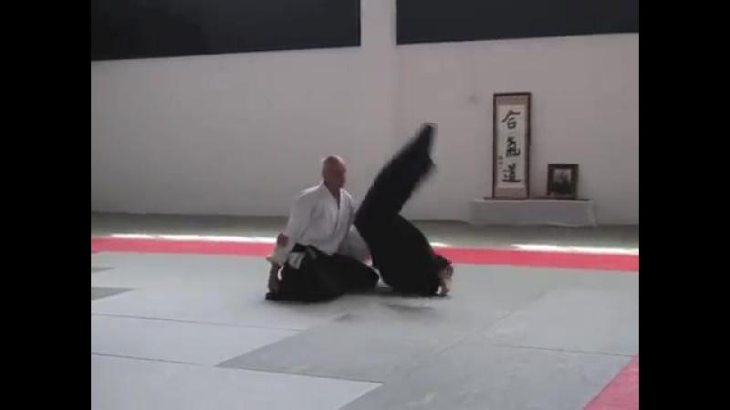 Aikido Seminar with Thorsten Schoo Sensei at Jikishin Dojo Auckland