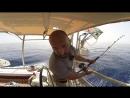 Красное море на яхте. Погода в Красном море. Рыбалка на яхте и очень длинный переход в разной погоде
