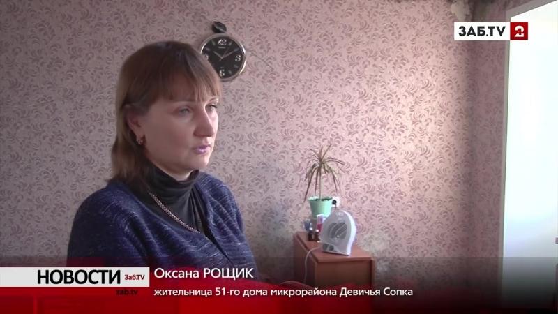 Члены комиссии по обследованию домов на Девичьей Сопке убегают от камер
