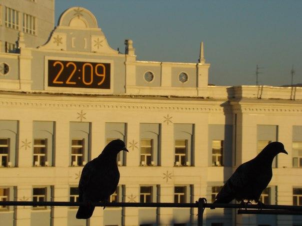 ТОП-5 городов Красноярского края по мнению Камышинского путешественник