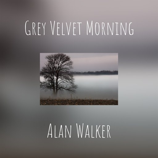 Alan Walker альбом Grey Velvet Morning
