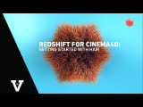 Redshift for Cinema4D Getting Started with Hair