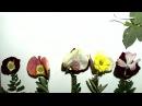 Вальс цветов мастер класс Кружка