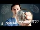 Поиски Трилобитов на реке Волхов/ Searching for Trilobites