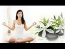 Медитация для снижения веса Похудение на уровне подсознания Бинауральные ритмы