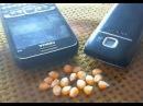 Cell Phone Radiation Pops Popcorn****