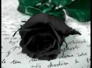 Luxuria - Rosas Negras