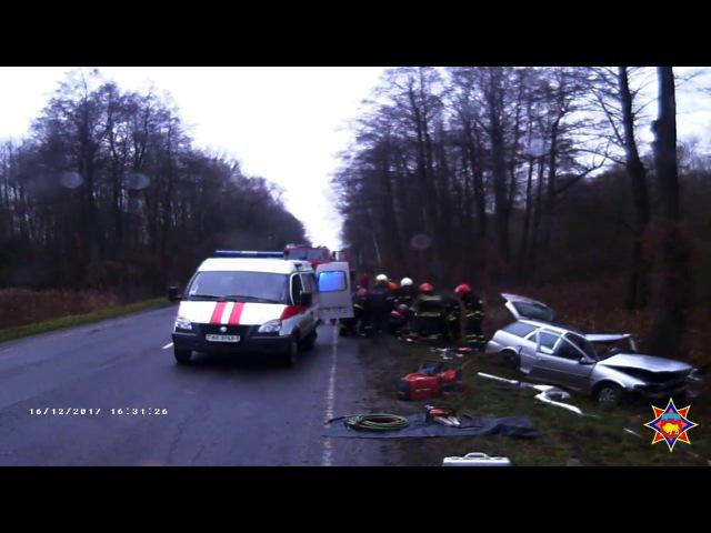 Опель столкнулся с деревом: деблокировали женщину-водителя