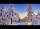 Фото, слайд- шоу! Зима!