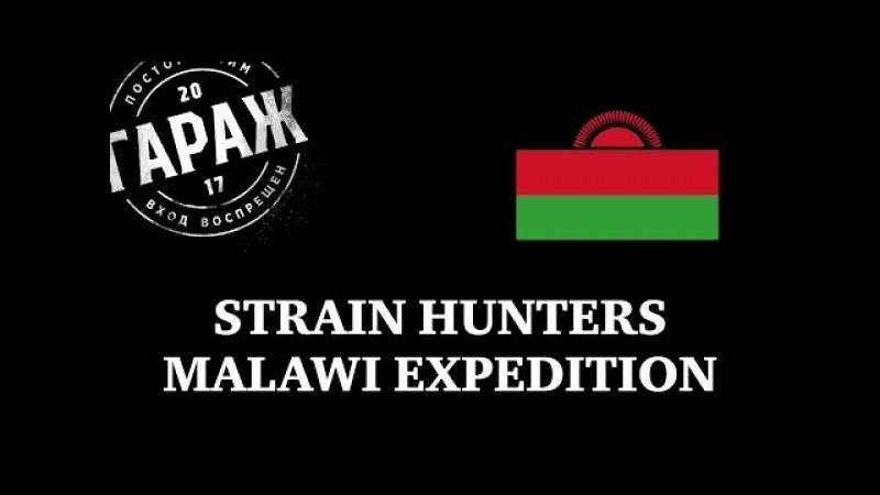 Strain Hunters Malawi Expedition русский перевод и озвучка Гараж