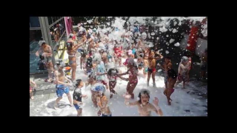Jardin Denfants Les Chatons moussee party