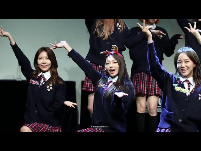 171116 신촌팬사인회 구구단(gugudan) - 초코코(Chococo) 강미나 Focus