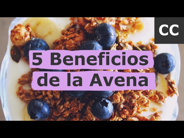 5 Beneficios de la Avena | Ciencia de la Comida