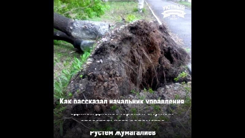 Почему взбунтовалась природа в Северо-Казахстанской области, объяснили синоптики