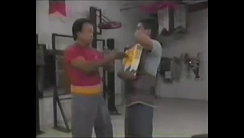 Августин Фонг. Техника Винг Чун. Основы мастерства