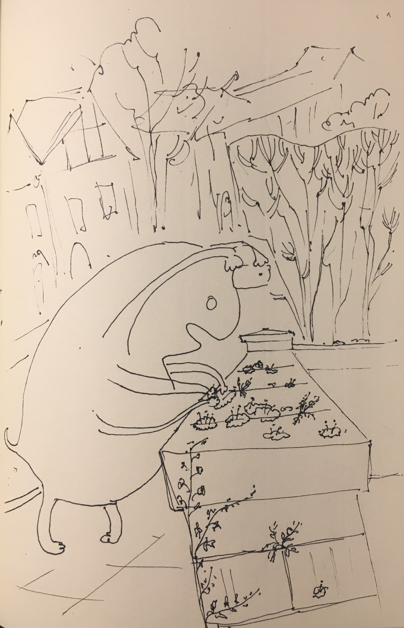 Келе гладит мхи