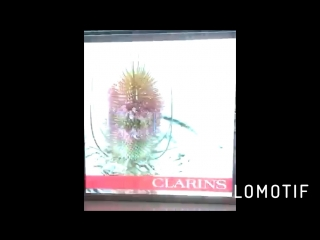 Led прозрачный видеодисплей для сети магазинов