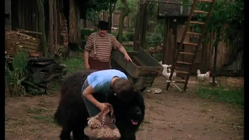 """""""Мальчик с большой чёрной собакой"""" (ГДР, 1985)"""