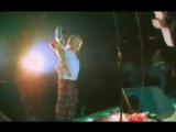 ✩ Концерт в СКК Олимпийский от 5 мая 1990 Виктор Цой группа Кино