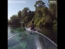 Путешествие по водам Центральной Флориды в прозрачной лодке