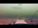 Реакция ЩУКИ на банку с мальками Подводная съемка