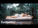 Sleep Better! Relaxing Sleepy Music and Night Nature Sounds Aid for Sleep Deprivation &amp Insomnia