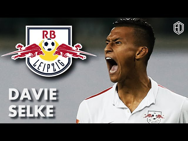 Davie Selke ● Goals, Skills Assists ● RB Leipzig ● 2015/16 ● HD