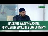 © Ваделов Абдул-Мажид - «Рузбан ламаз дита бокъо йий?» 19.07.2017