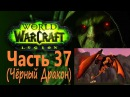 WoW Circle LegionВоинЧасть 37Чёрный Дракон