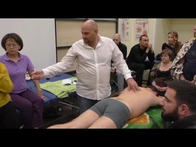 Висцеральная остеопатия работа с желудком, брыжейкой, сигмовидной кишкой