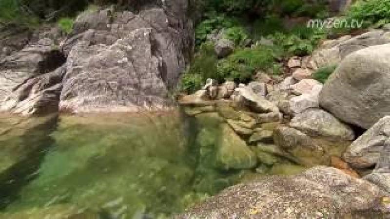 Красивое видео природы без музыки естественные звуки в качестве fullhd Beautiful video of nature