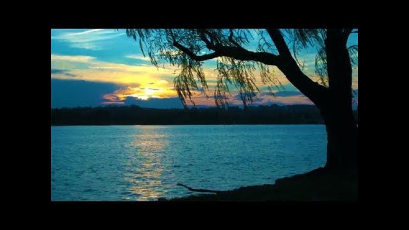 Soft Calm Music: Relaxing Music, Sleep Music, Peaceful Music, Soothing Music, Calm Music 🌄17