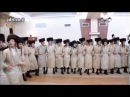 Toldos Aharon - Nadvorna Haifa Wedding - Cheshvan 5777