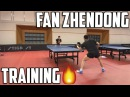 Fan Zhendong Amazing Training Swedish Open 2017