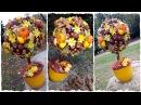 Осенний топиарий мастер класс 💗 качество 1080р! Топиарий из каштанов от Алены Тихоновой