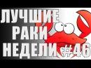 ЛРН выпуск №46. САМЫЙ АБСУРДНЫЙ КОЛОБАНОВ [Лучшие Раки Недели]