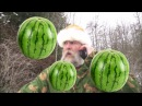 Varg Solves African Starvation