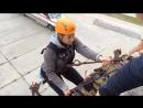 Технологии аварийно-спасательных работ. Деблоктрование пострадавших с верхних этажей здания