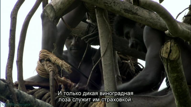 BBC «Тайны Тихого океана (1). Океан островов» (Познавательный, природа, путешествие, 2009)