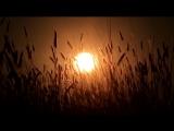 Баба Яга (Baba Yaga) - Ой, то не вечер (So Ends Another Day)