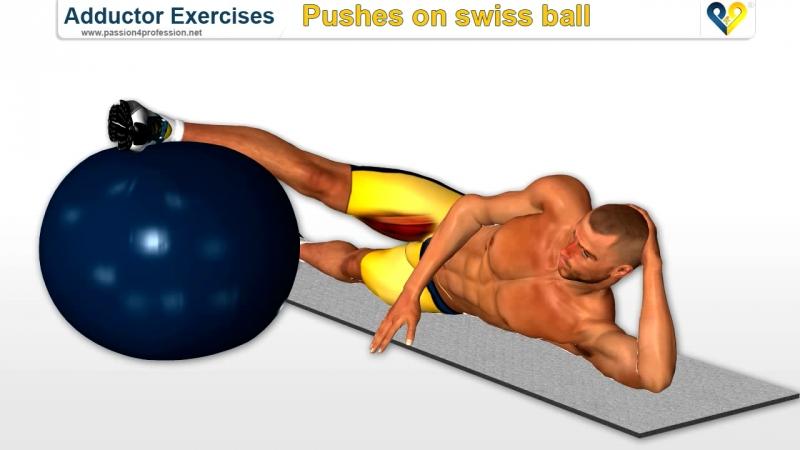 Passion4Profession Упражнение с фитболом на внутреннюю часть бедра и ягодичную мышцу