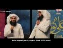 Indonesia Akhlak Islam Mufti Menk Syaikh Mansour As Salimi Nayef As Shahfi