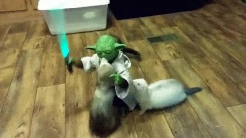 Йода , неравная битва