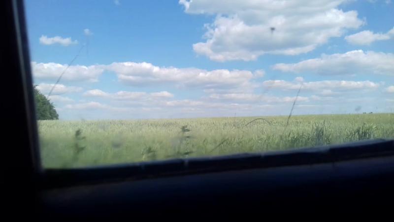 Поездка в Велико-Михаловку 4