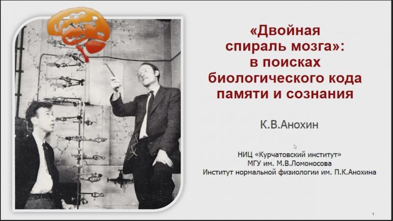 «Двойная спираль мозга» в поисках биологического кода памяти и сознания. Константин Анохин