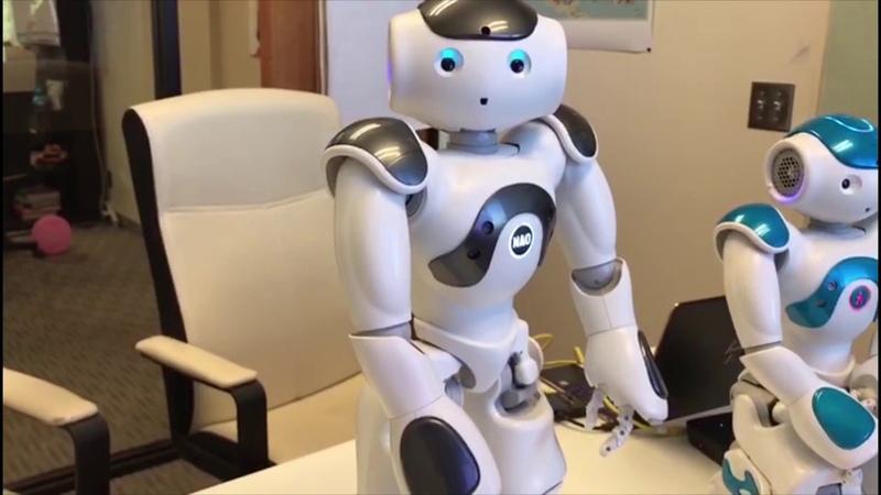First Impression - SoftBank Robotics Nao V6