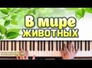 В мире животных на фортепиано