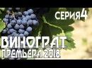 Премьера 2018 - Виноград 4 серия сериал, мелодрама