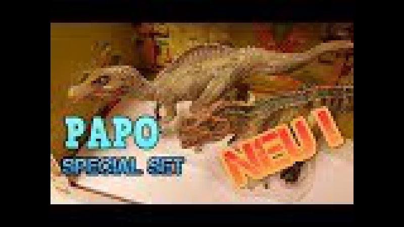 PAPO Special Set / Junger Spinosaurus Ceratosaurus - Review 170 (german)