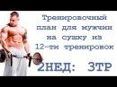 Тренировочный план для мужчин на сушку из 12 ти тренировок 2нед 3тр